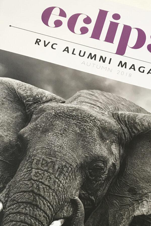 Eclipse Magazine Cover